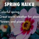 Great Haiku About Flowers Pics293