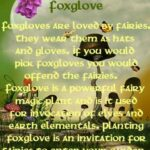 Great Having A Friend Is Like Planting A Flower Poem Pics999