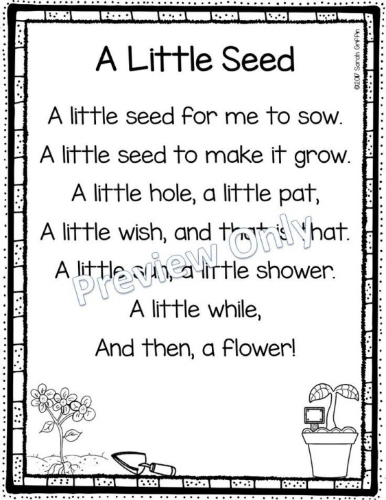 Great Little Flower Poem Pic953