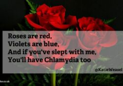 Great Love Poems For Her Roses Are Red Photo098