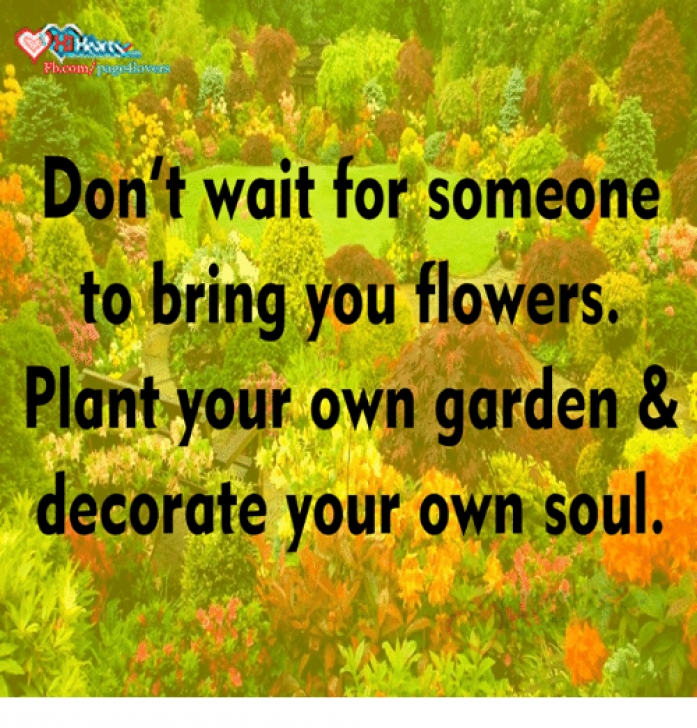 Great Plant Your Own Garden And Decorate Your Own Soul Image321