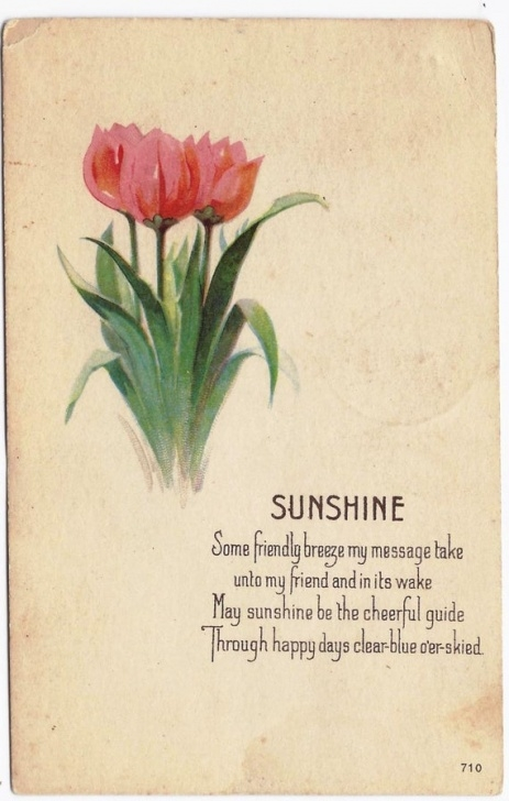 Great Poem About Love And Flowers Pic955