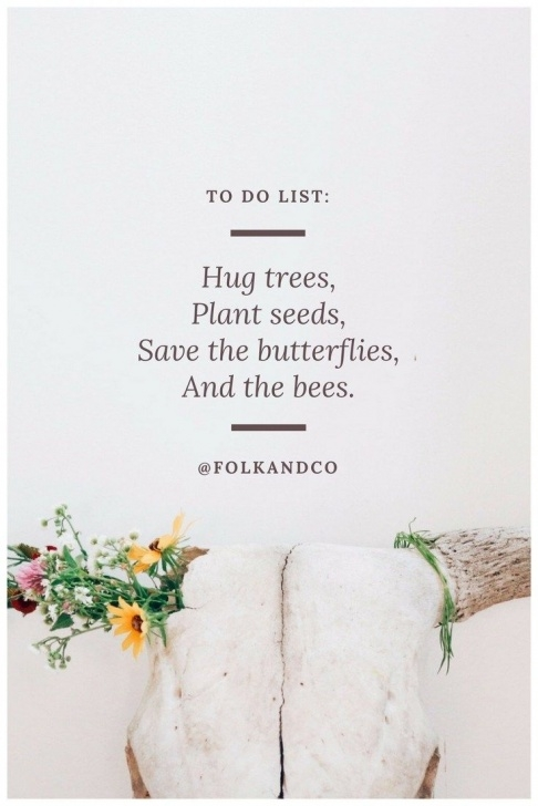 Great Poem About Plants Growing Pics919