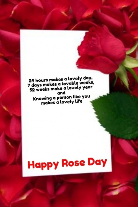 Great Poem On Flower Rose Image890