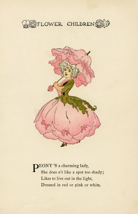 Great Poems About Pink Flowers Image217