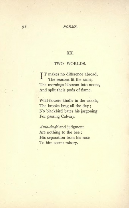 Great Shakespeare Daffodils Poem Pics919