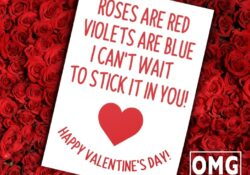 Great Silly Roses Are Red Valentines Day Poems Image411