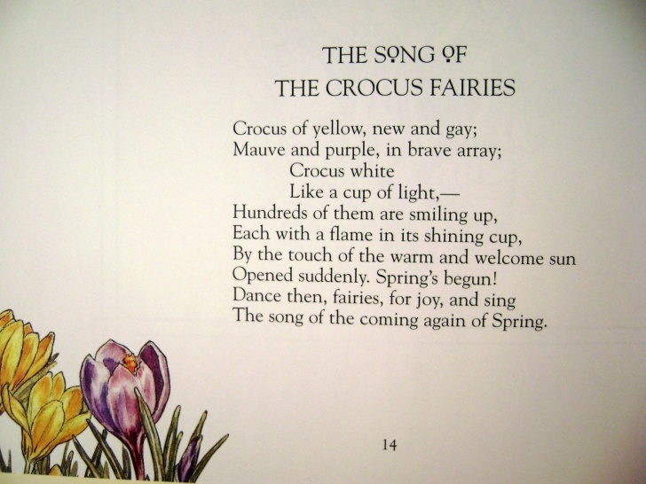 Great Small Poem On Flowers Pic653