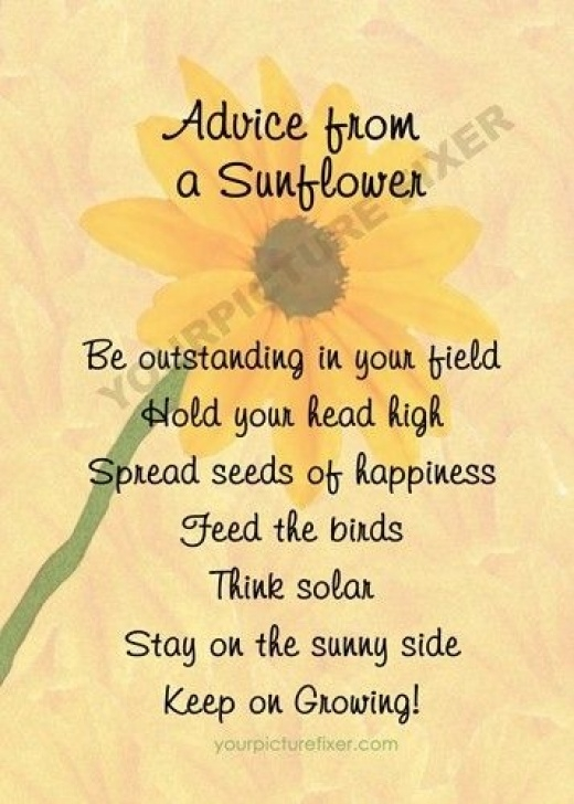 Great Sunflower Acrostic Poem Picture544