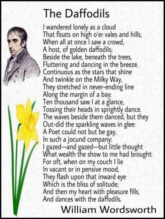 Great The Daffodil By William Wordsworth Photo135
