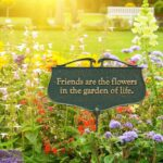 Greatest Beautiful Garden Poem Image504