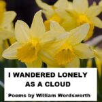 Greatest English Poem Daffodils Photo812
