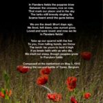 Greatest Famous Poems About Poppies Pics970