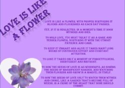Greatest Flower Poems By Famous Poets Picture350