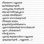 Greatest Malayalam Poems About Flowers Photo633