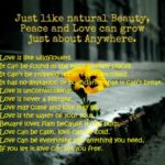 Greatest Poem About Love And Flowers Photo419