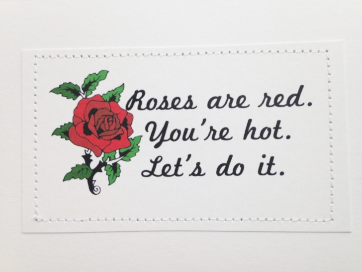 Greatest Roses Are Red Violets Are Blue Funny Dirty Image973