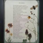 Greatest The Garden Poem Picture060