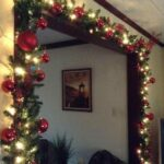 Inspirational Christmas Cactus Poem Picture841