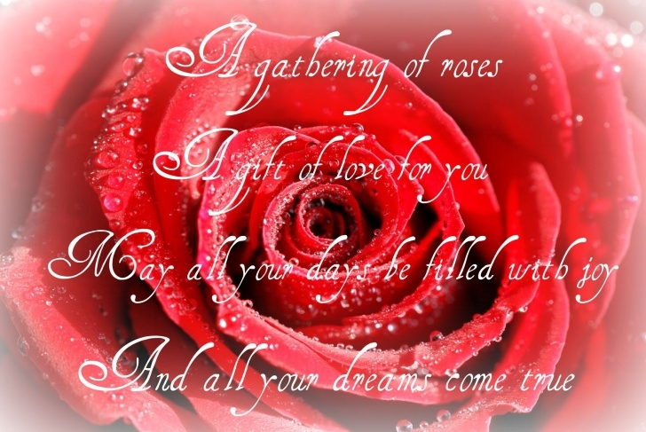 Inspirational Dead Roses Poem Picture066