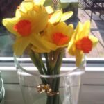 Inspirational He Gave Me Flowers Today Picture141