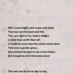 Inspirational Into The Rose Garden Poem Image826