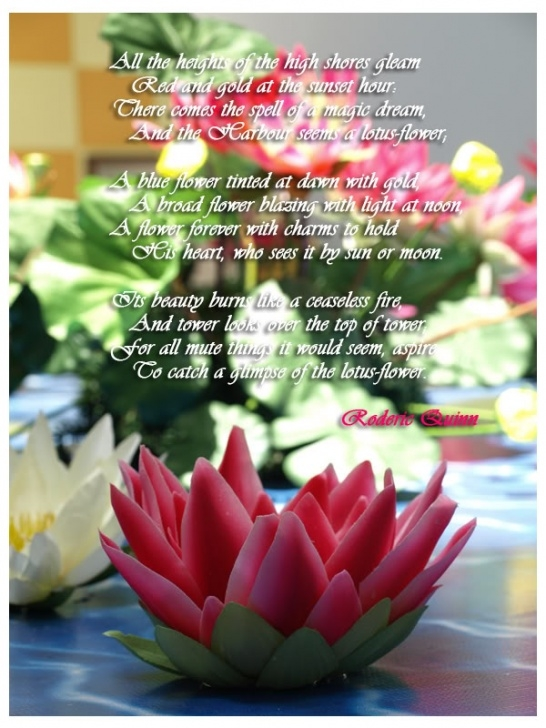 Inspirational Life Is Like A Flower Poem Picture195