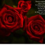Inspirational Poems About Roses Photo118