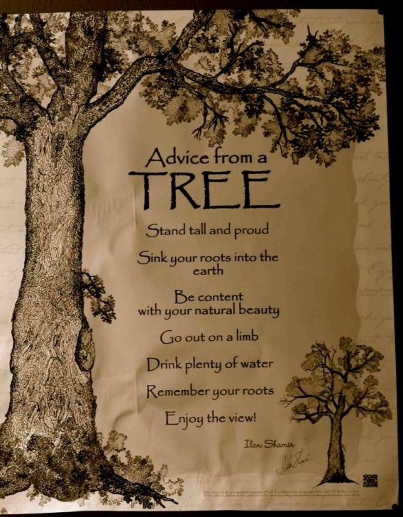 Inspirational Poems About Trees And Growth Picture240
