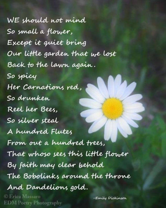 Inspirational Poems Related To Flowers Picture857