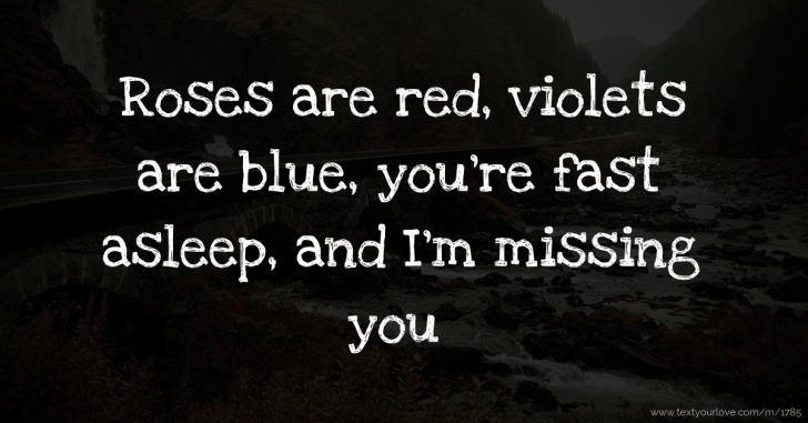 Inspirational Roses Are Red Violets Are Blue Funny Image058
