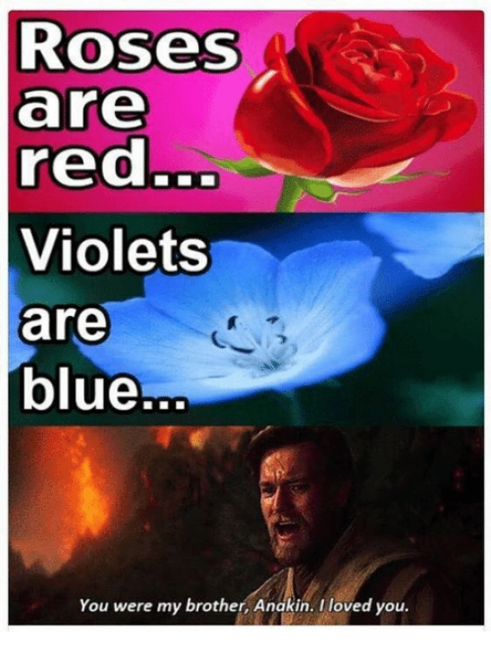 Inspirational Roses Are Red Violets Are Red Photo780