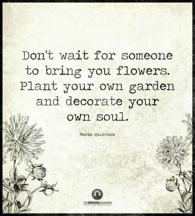 Inspirational So You Plant Your Own Garden And Decorate Your Own Soul Pics485