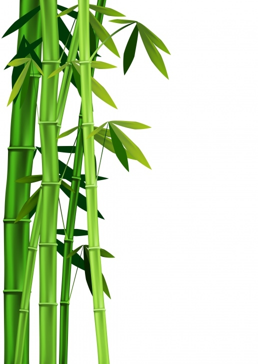 Inspirational The Bamboo Tree Poem Pic743