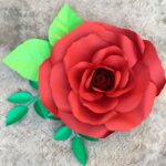 Inspirational The Flower That Grew From The Concrete Photo856