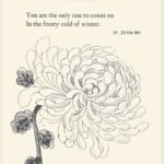 Inspirational The Last Chrysanthemum Poem Picture012
