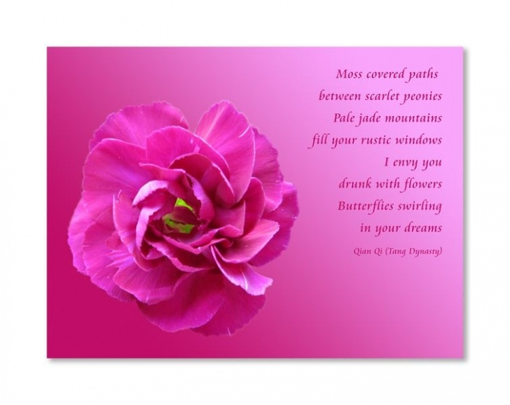Inspirational The Most Beautiful Flower Poem Image132