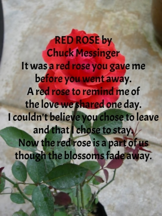 Inspirational You Are My Rose Poem Photo806