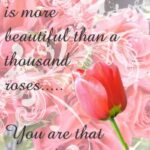 Inspirational You Can Cut All The Flowers Poem Pics063