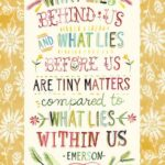 Inspiring Famous Daisy Poems Pic821