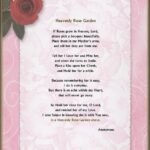 Inspiring Have You Ever Loved A Rose Poem Picture338