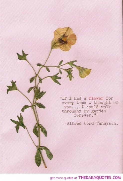 Inspiring Poem About Love And Flowers Pic810