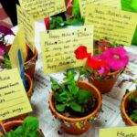 Inspiring Poem About Plants Growing Pics801