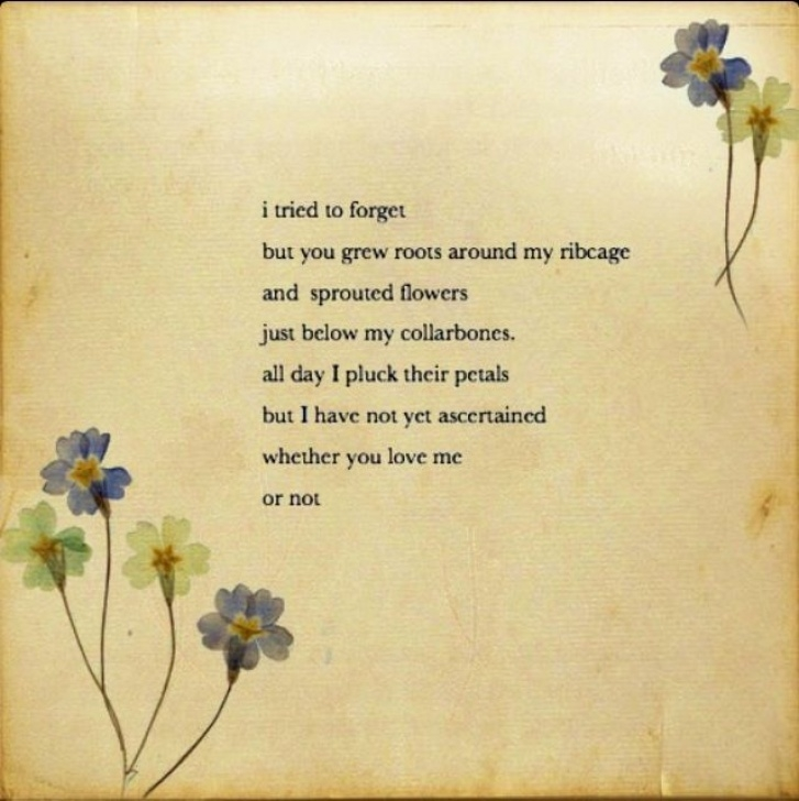 Inspiring Poem On Flowers In English Pic127