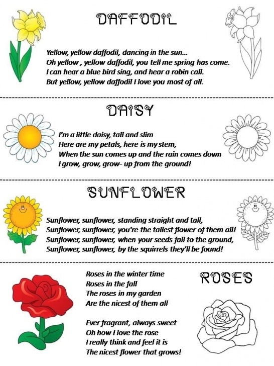 Inspiring Poem The Most Beautiful Flower Picture334