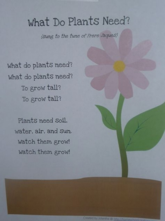 Inspiring Poems About Flowers And Gardens Pic523