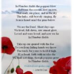 Inspiring Poems About Poppies And Love Picture083