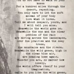 Inspiring Wildflower Poems By Famous Poets Picture357