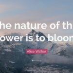 Marvelous Alice Walker The Flowers Pic723