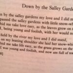 Marvelous Down By The Salley Gardens Poem Pics921